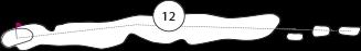 Parcours trou 12